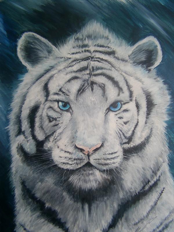 Voila un de mes dessin en couleur b bkr design - Tigre blanc dessin ...