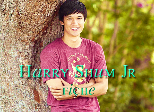 . Harry Shum Jr .