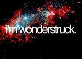 i'm wonderstruck.