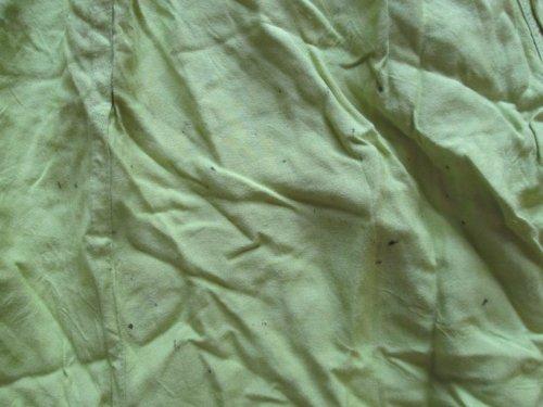 Sarouel Vert