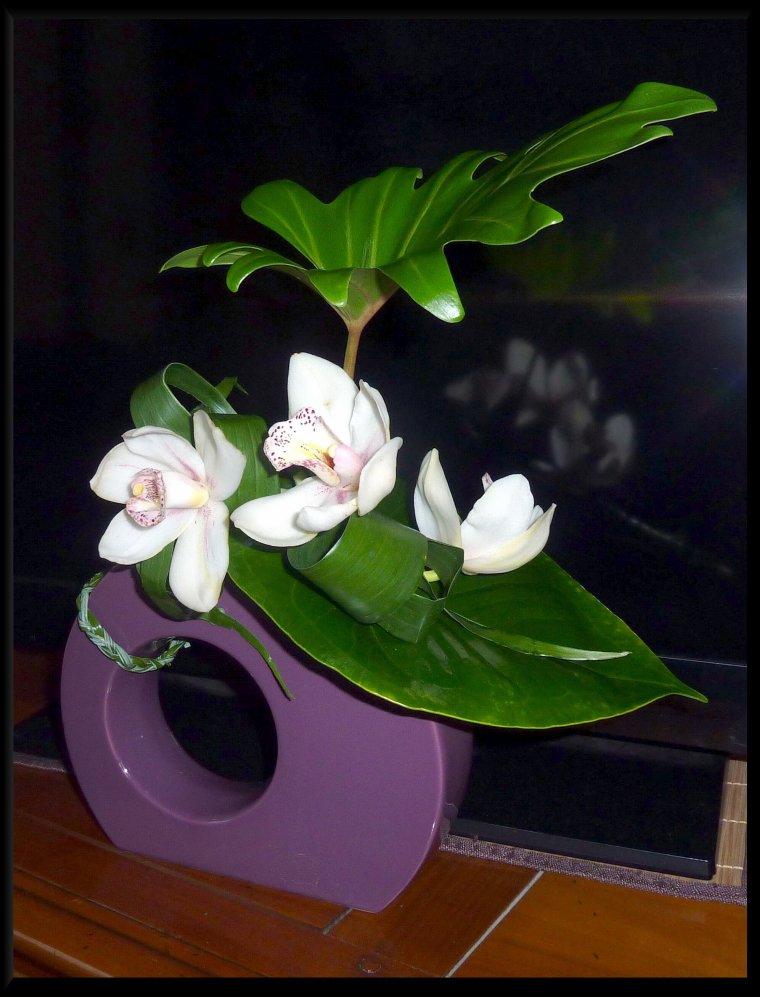 Fleurs offertes, merci Marcelle