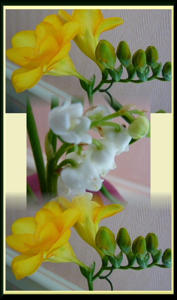 Juste un brin de muguet pour vous souhaiter  tout le bonheur du monde, bon 1er mai