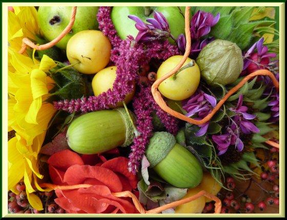 Vive les couleurs d'automne !!!