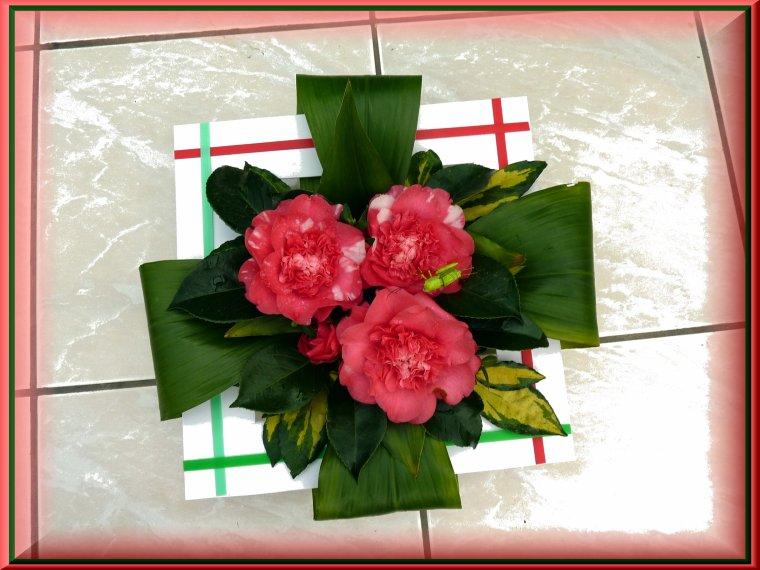Le feuillage n'étant pas abîmé, je vous les présente avec les fleurs du jardin, bon dimanche.