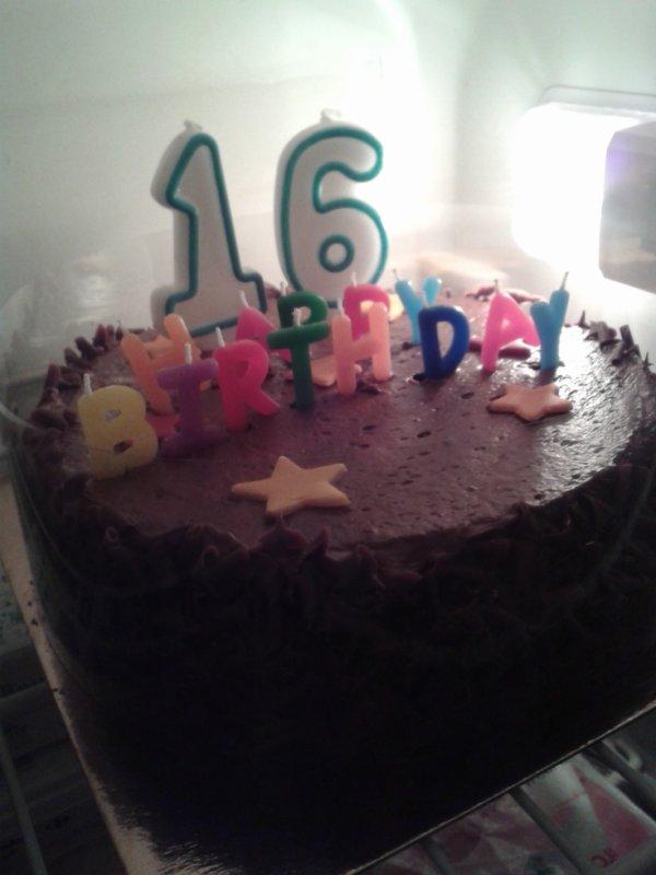 Voici le gâteau de xavier pour ses 16 ans le 01 Mars 2014 chez mes amies les 2 Philippe, Serge, Roger et les enfants des Philippes.