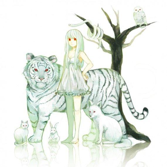 manga et tigre