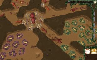 *    Empires of the Undergrowth : dans la vie des fourmis    *