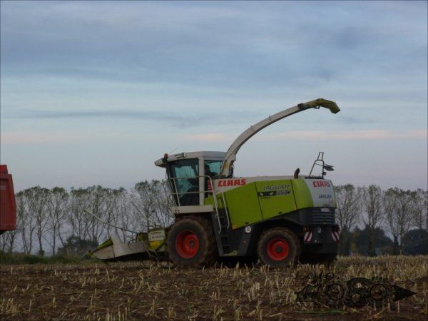 Claas Jaguar 850 green eye