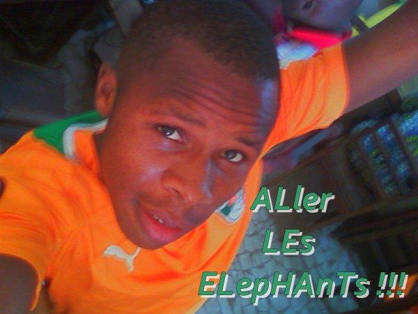 ᵯᵰᵯᵰᵯ––––º•AllERs LeS ELepHAntS !!!! Je VoUS SoUtIeNT MalGré TouS !!