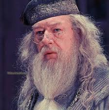 FICTION;le secret de albus dumbledore