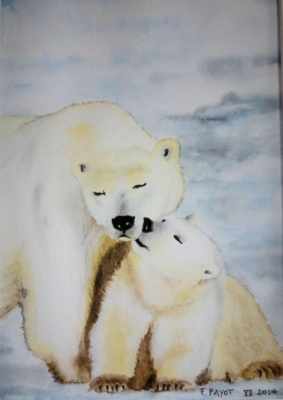 aquarelle - polar bear kiss