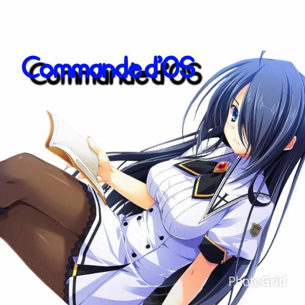 Commande d'OS