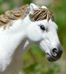 Photo de HorseMorganeSchleich