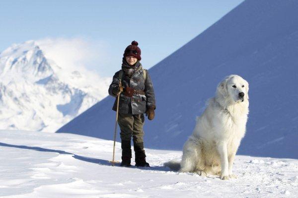 Belle et Sébastien en montagne