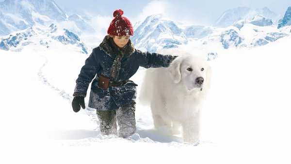 Belle et Sébastien caresse en montagne