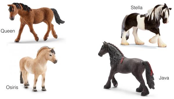Les chevaux vous disent Bonjour !