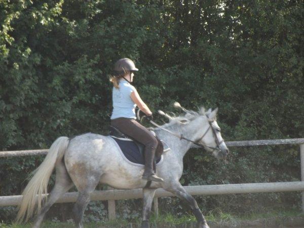 Le cheval idéal n'est pas le cheval parfait, c'est juste celui dont on n'aime tout, même ses défauts.merci d'être la source je t'aime <3
