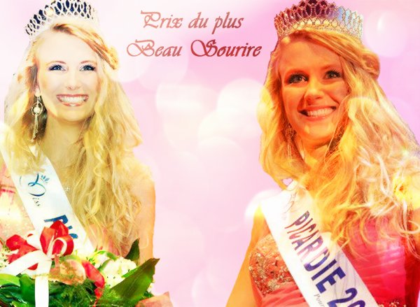 Les Prix de l'élection de la Miss du blog
