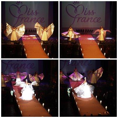 Election de Miss Orléanais 2013 - Show Miss France Partie 2