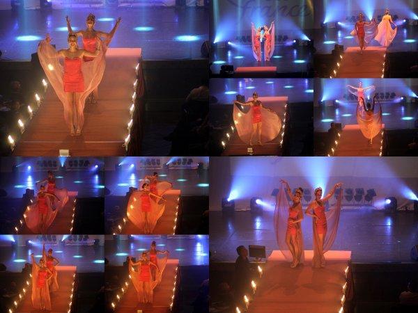 Election de Miss Orléanais 2014