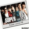 Super junior : sous groupe, Super Junior M