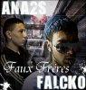 ANA2S-FALCKO