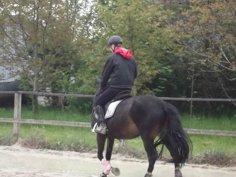 L'equitation a vie :D