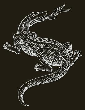 La Salamandre.