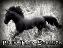 Photo de Petit-Trot-Schleich