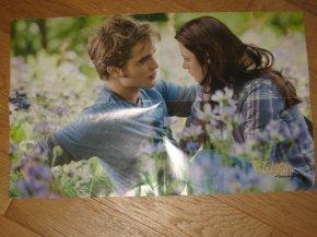 Poster Twilight - Alice au pays des merveilles .