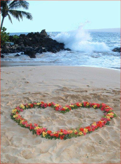 ben là c'est pour vous mes ami(e)s;je vous invite à la plage!