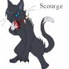 dark-cat79