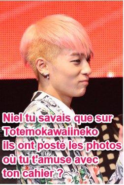 Et oui Niel tu est sur le blog TotemoKawaiiNeko !