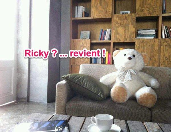 Le nounours de Ricky pendant les concerts ...