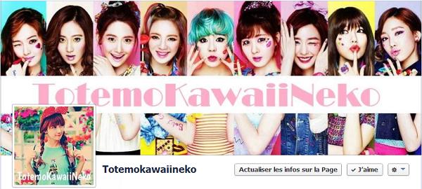 TotemoKawaiiNeko sur FB <(^-^)>