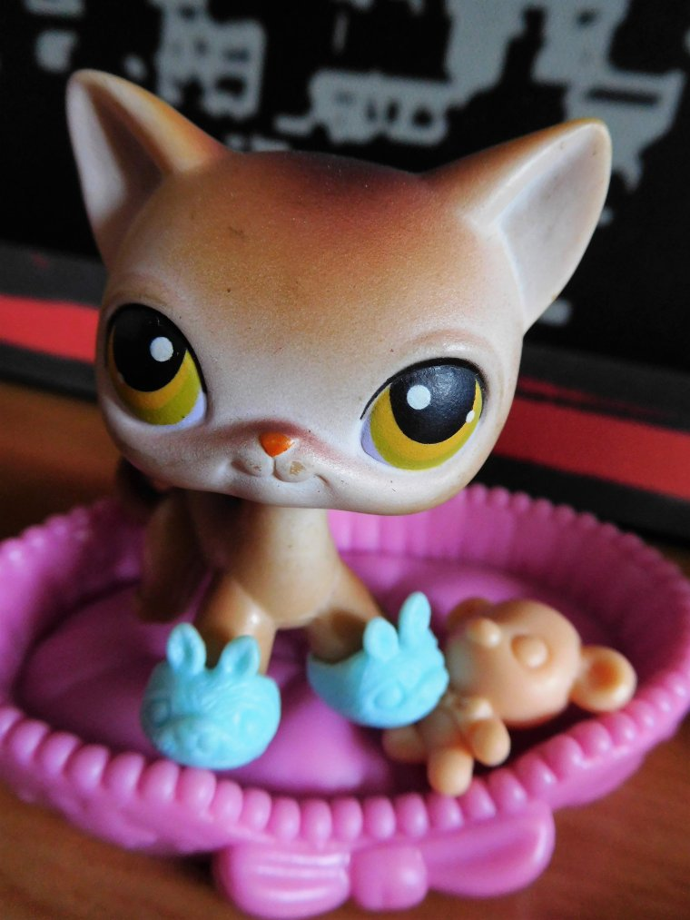 LPS - LITTLEST PET SHOP : T.V. NIGHT / PLATEAU T.V. !!!