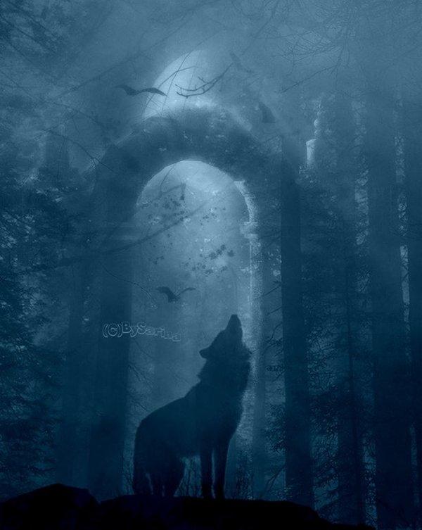 la porte du monde de la nuit