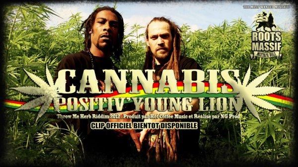 """Nouveau clip du Positiv Young Lion """"Cannabis"""""""