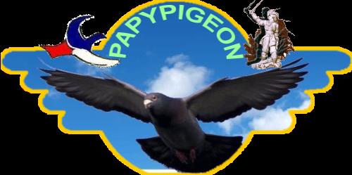BLOG de PAPYPIGEON