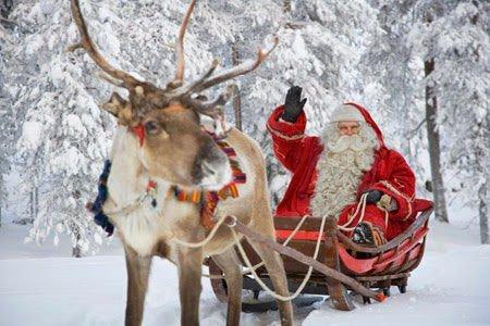 Joyeux Noël à tous Papypigeon