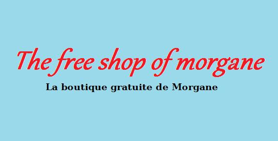 Ouverture de ma boutique gratuite en ligne sur mon blog !