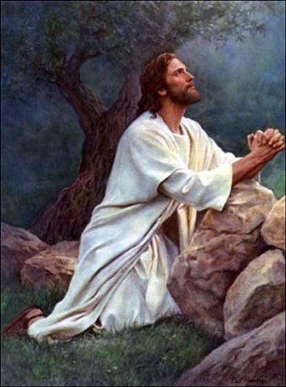 transforme-moi tout en ta miséricorde seigneur