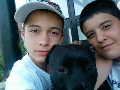 moi mon zinc et mon chien