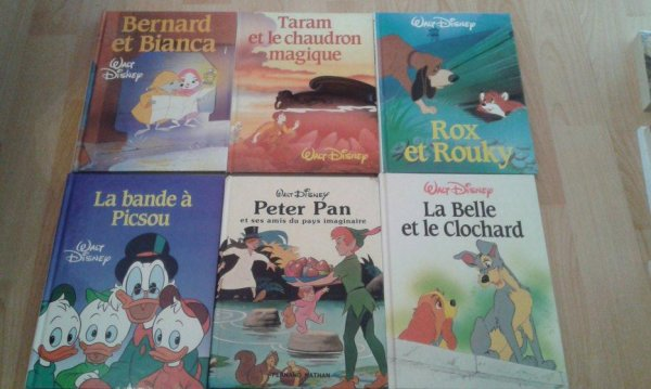 livres Disney grand format