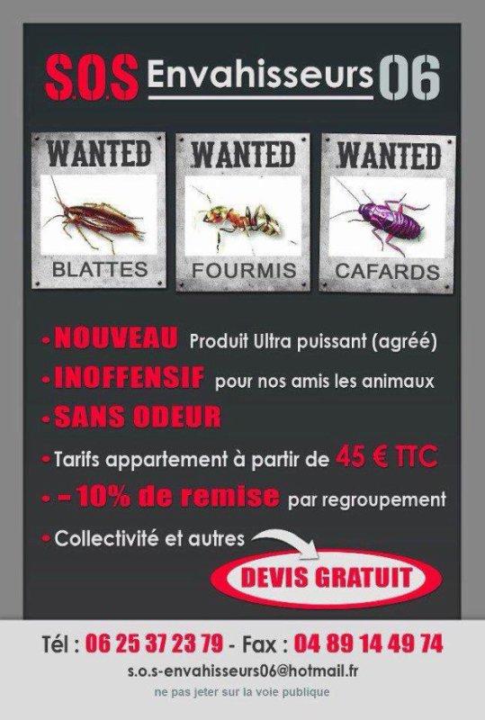 Désinsectisation, Anti, Traitement, Solution (NICE, Cannes, Menton) de blattes, cafards, moustiques, fourmis, araignées...