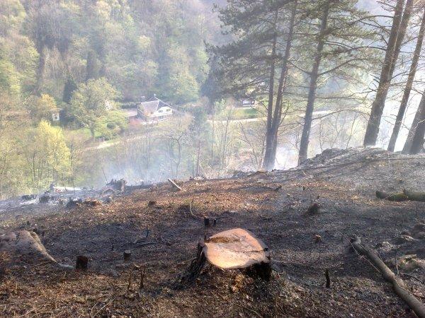 Feu de bois à Sy 11 avril 2011