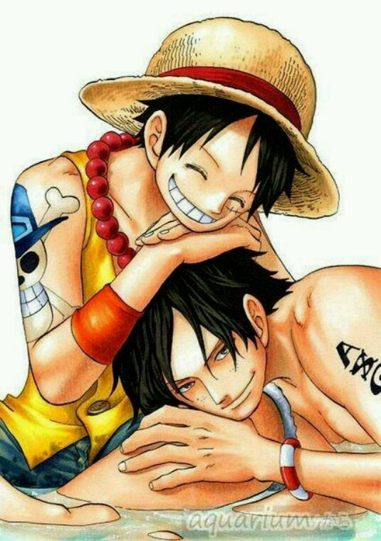 Ace et Luffy un grand amour fraternel