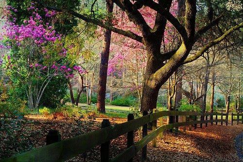 On passe une moitié de sa vie à attendre ceux qu'on aimera et l'autre moitié à quitter ceux qu'on aime.  - Victor Hugo