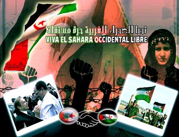 Nouv° 2o//° vive la Sahara Occidental Libre