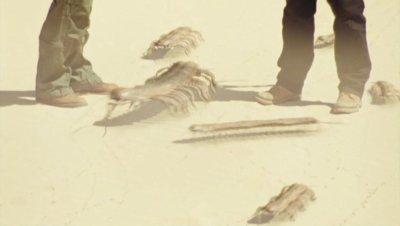 Épisode 5:Au milieu du désert